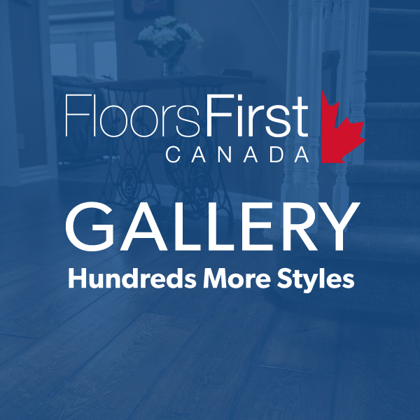 link to entire floors first gallery