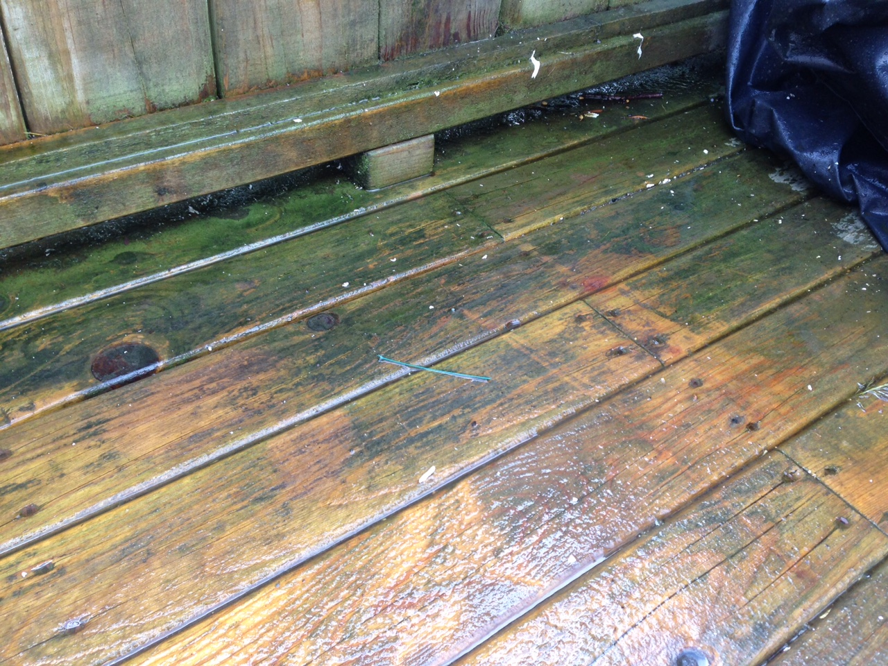 Deck Rescue: Make Old Wood New Again