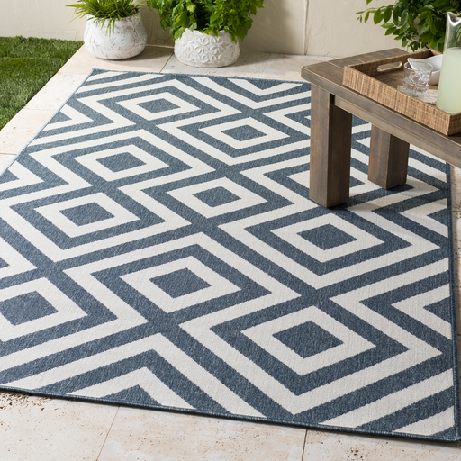 Surya Indoor Outdoor Rug - alf9657